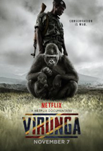Poster do filme Virunga