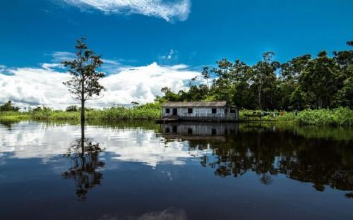 Imagem 5 do filme A Lei da Água - Novo Código Florestal