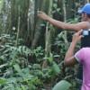 Imagem 5 do filme No Meio do Rio, Entre as Árvores
