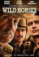 Poster do filme Wild Horses