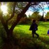 Imagem 13 do filme Adeus à Linguagem
