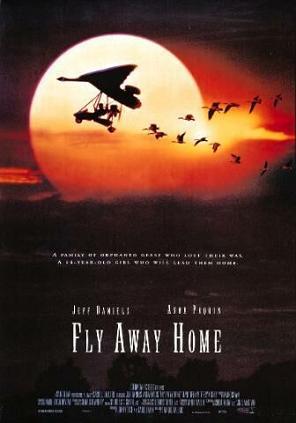 Imagem 1 do filme Voando para Casa