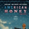 Imagem 1 do filme American Honey