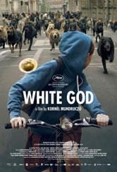 Poster do filme White God