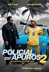 Poster do filme Policial em Apuros 2