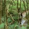Imagem 16 do filme A Terra Vermelha