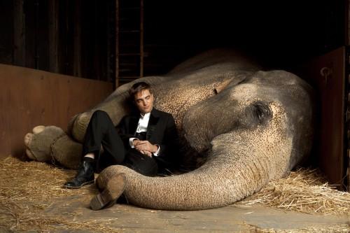Imagem 2 do filme Água Para Elefantes