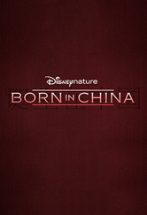 Poster do filme Born in China