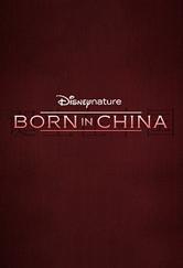 Assistir Born in China Torrent 720p Dublado 1080p Online