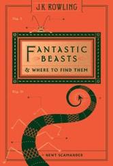 Poster do filme Animais Fantásticos e Onde Habitam 4