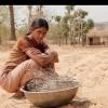 Imagem 5 do filme Love Sonia