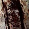 Imagem 7 do filme Dia dos Mortos