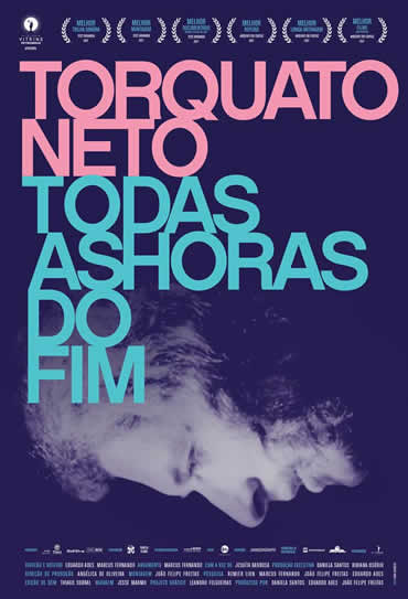 Poster do filme Torquato Neto - Todas as Horas do Fim