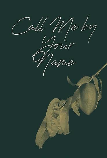 Poster do filme Me Chame Pelo Seu Nome 2