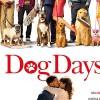 Imagem 3 do filme Dog Days