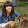 Imagem 8 do filme Dog Days