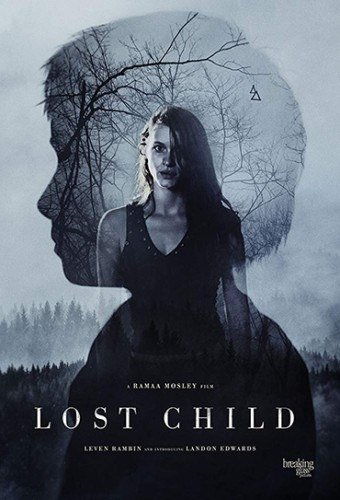 Poster do filme Lost Child