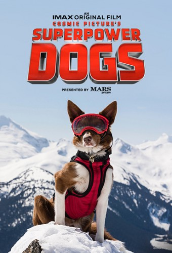 Assistir Cães Superpoderosos 2019 Torrent Dublado 720p 1080p Online