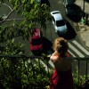 Imagem 9 do filme Vergel