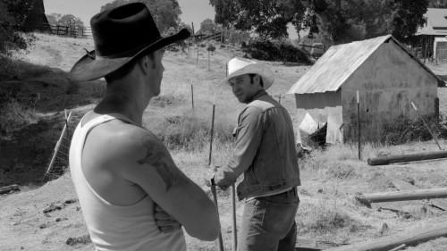 Imagem 2 do filme A Divisão