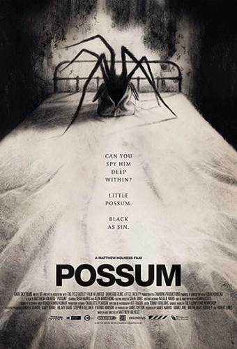 Poster do filme Possum