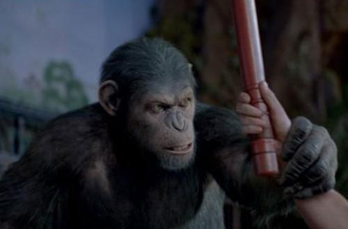Imagem 4 do filme Planeta dos Macacos: A Origem