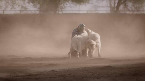 Imagem 4 do filme A Maior Pequena Fazenda
