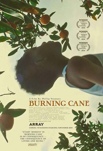 Poster do filme Burning Cane