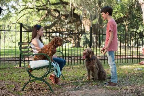 Imagem 3 do filme Uma Mente Canina