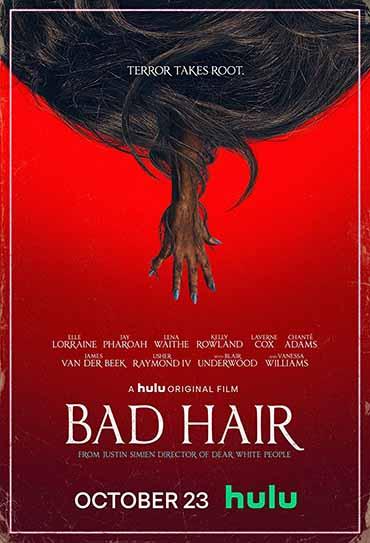 Poster do filme Bad Hair