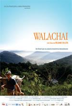 Poster do filme Walachai