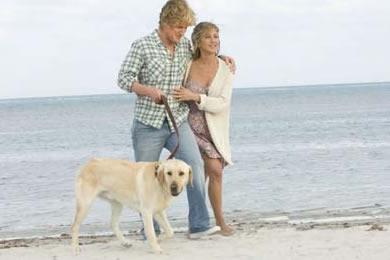 Imagem 3 do filme Marley e Eu