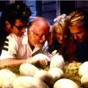 Imagem 14 do filme Jurassic Park 3D - O Parque dos Dinossauros