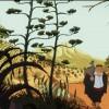 Imagem 12 do filme O Gato do Rabino