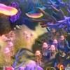 Imagem 3 do filme O Mar Não Está Prá Peixe 2: Tubarões à Vista!