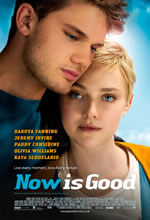 Poster do filme Now Is Good