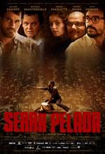 Poster do filme Serra Pelada