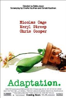 Poster do filme Adaptação