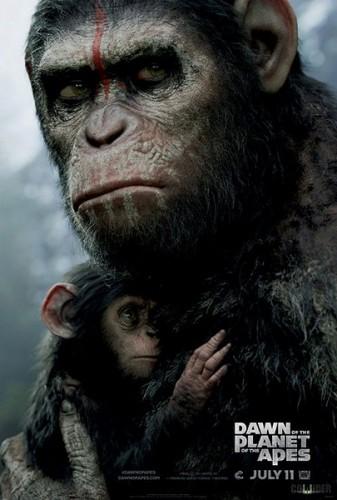 Imagem 1 do filme Planeta dos Macacos: O Confronto