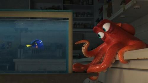 Imagem 1 do filme Procurando Dory
