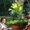 Imagem 10 do filme Flores Raras