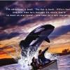 Imagem 6 do filme Free Willy 2 - A Aventura