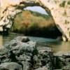 Imagem 4 do filme A Caverna dos Sonhos Perdidos
