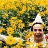 Imagem 1 do filme Pinóquio