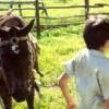 Imagem 11 do filme 2 Filhos de Francisco