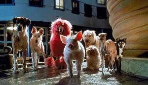 Imagem 3 do filme Babe - O Porquinho Atrapalhado na Cidade