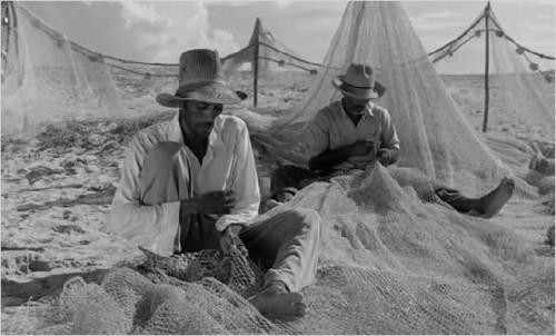 Imagem 5 do filme Araya