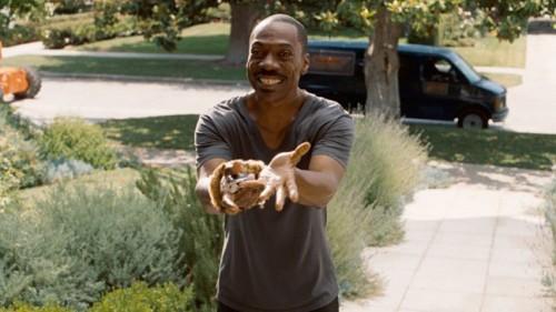 Imagem 3 do filme As Mil Palavras
