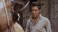 Imagem 2 do filme Estrela de Fogo