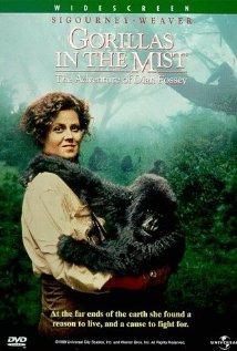 Poster do filme Nas Montanhas dos Gorilas